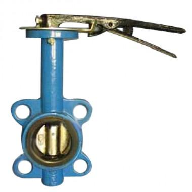 Затвор дисковый поворотный Ду-50 (диск чугун)